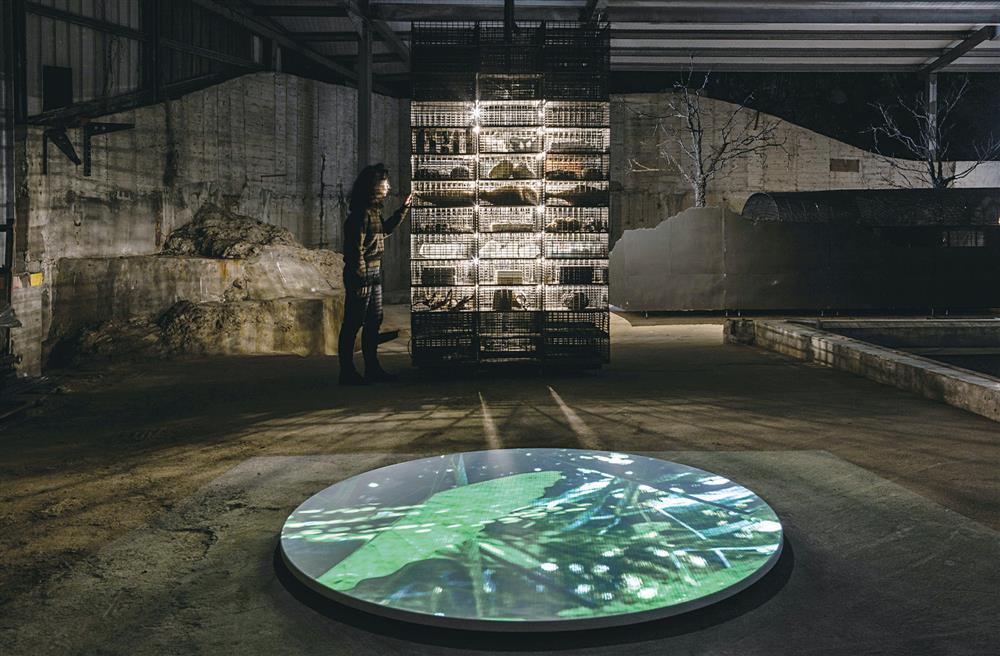 2021 威尼斯建築雙年展_03