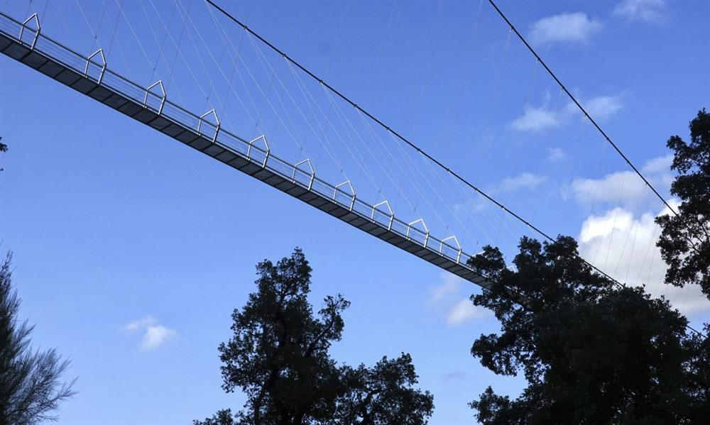 葡萄牙阿羅卡516吊橋_06